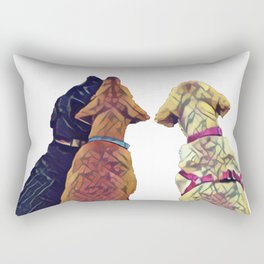 Three Amigos I Rectangular Pillow