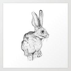 Bushman Hare Art Print