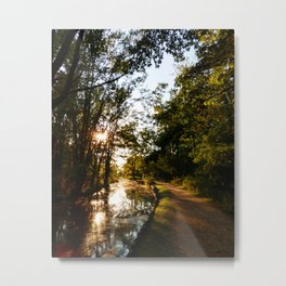 Water Walkin Metal Print