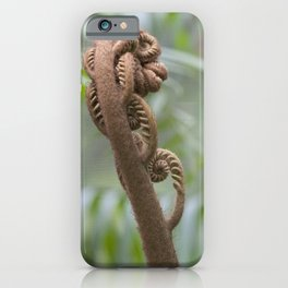 Little Fern Frond iPhone Case