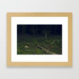 Secret Midnight Love  Framed Art Print