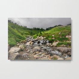 Edith Creek - Mount Rainier National Park Metal Print