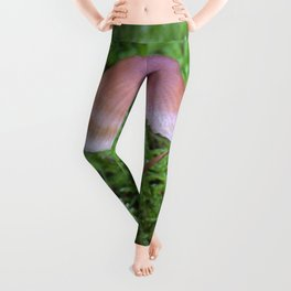 Split Fungi Leggings