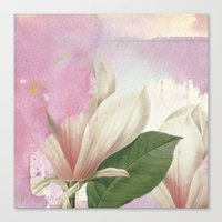 magnolia Canvas Prints featuring magnolia by clemm