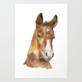 Horse Head Watercolor Art Print