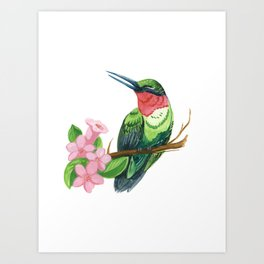 Summer Hummingbird Art Print