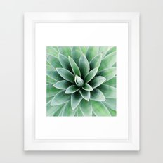 Plant print, Modern, Tropical, Wall Art, Minimal, Pillow Framed Art Print