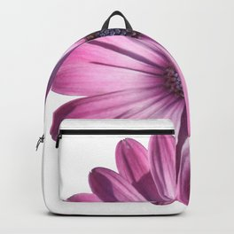 Spectacular African Daisy Isolated Backpack