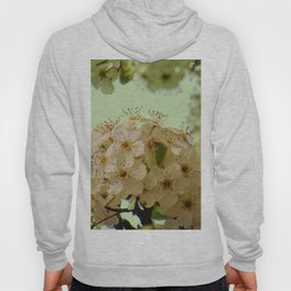Spring Flowers on mint green background A377 Hoody