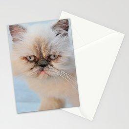 Himalayan Cat Stationery Cards
