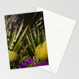 Protea pincushion flowers with vignette Stationery Cards