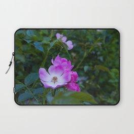 Summer pink wild flowers Laptop Sleeve