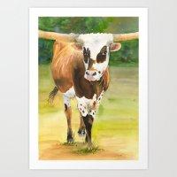 texas longhorn walking  Art Print