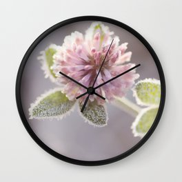 Blooming clover covered with first hoarfrost Wall Clock