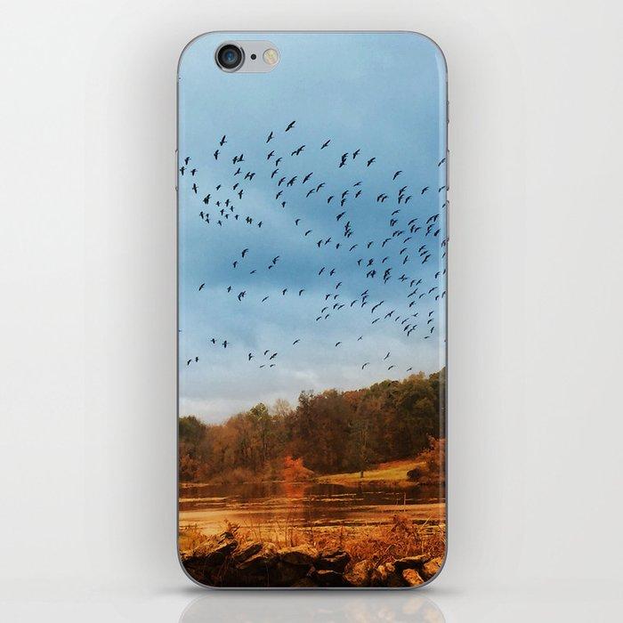 Good Migrations iPhone Skin