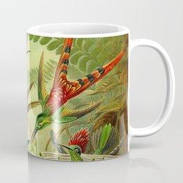 HUMMINGBIRD COLLAGE- Ernst Haeckel Coffee Mug