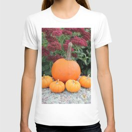 Little Pumpkin Family T-shirt