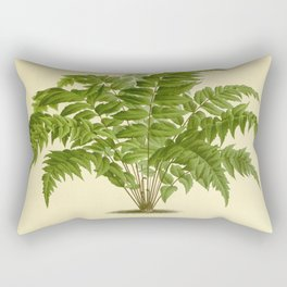 Tree asplenium falcatum L 6 Rectangular Pillow