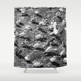 Fou de Bassan #4 Shower Curtain