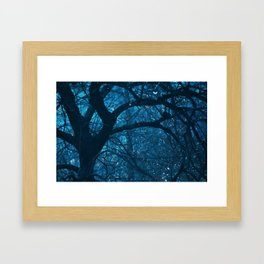 Magic Woods Framed Art Print