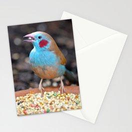 Cordon Bleu Finch Stationery Cards