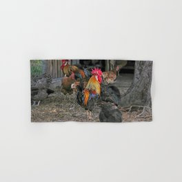 Rooster in the hen house Hand & Bath Towel