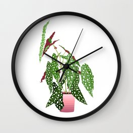 Polka Dot Begonia Potted Plant in White Wall Clock