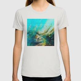 STORMY TEAL AP II T-shirt