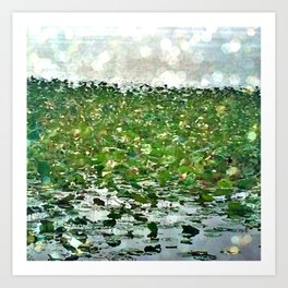 Lily Pads On The River Art Print