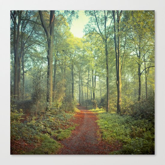 Forest Morning Walk Canvas Print