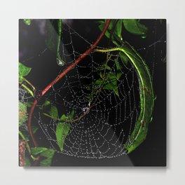 Dewy Curved Leaf Web Metal Print