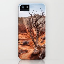 Picturesque Trail through Kodachrome Basin State Park iPhone Case
