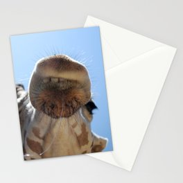 Giraffe with drool Stationery Cards