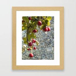 Hanging Framed Art Print