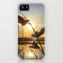 Milkweed Pond iPhone Case