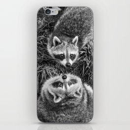 Racoon Photography | Animal Art | Wildlife | Cute | Adorable | Black and white iPhone Skin