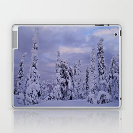 The Winter Wonderland Laptop & iPad Skin