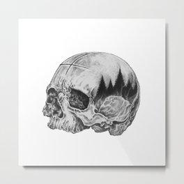Human/nature Metal Print