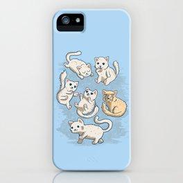 Cute Kittens iPhone Case