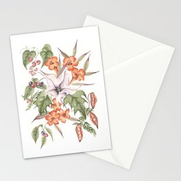 Thorn Apple with Yellow Jasmine and Other Poisonous Plants Stationery Cards