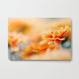 In Orange No 2 Metal Print