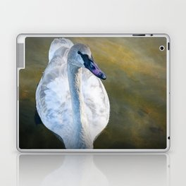 Trumpeter Swan floating on the water Laptop & iPad Skin