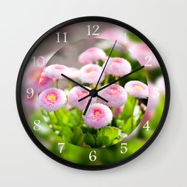 Bellis perennis pomponette flowers Wall Clock