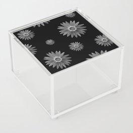 Monochrome Acrylic Box