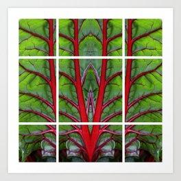 Swiss Chard - Leaf of Life Art Print