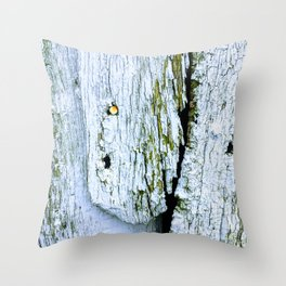 Weathered Barn Wall Wood Texture Throw Pillow