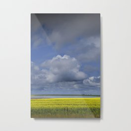 Canola Field and Lake In Southern Saskatchewan Metal Print