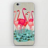 yetiland iPhone & iPod Skins featuring Flamingos by Andrea Lauren  by Andrea Lauren Design