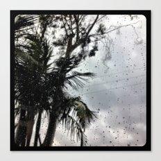 Rain. Canvas Print