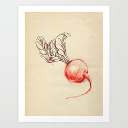 Cabinet of Curiosities No.8 Art Print